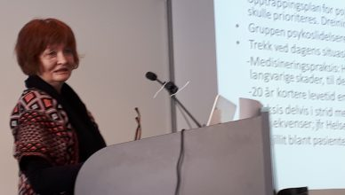 Image: Bjørg Njaa of the Joint Action for Drug-Free Treatment in psychiatry holding a presentation