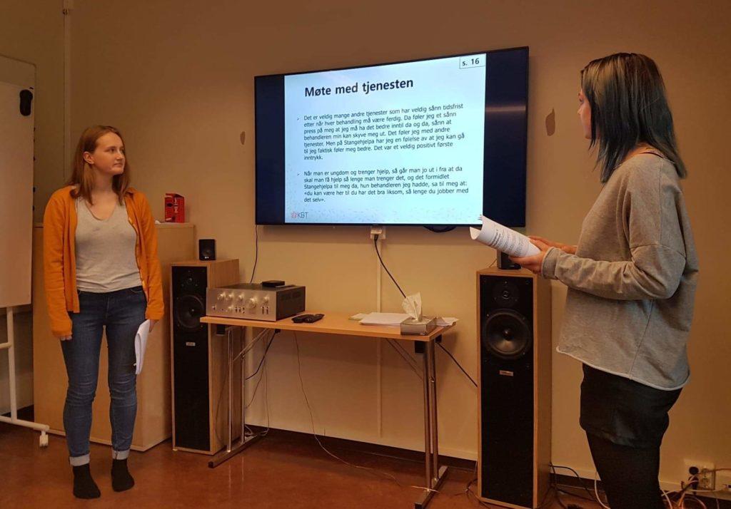 Presentasjon.Minstemmeteller.Dialogkonferanse.Stangehjelpa
